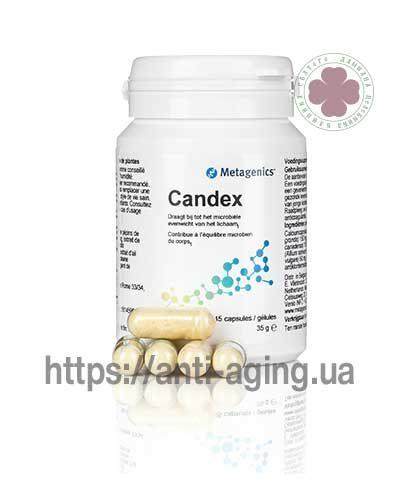 Candex /Кандекс